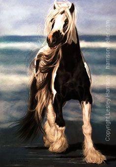 Lesley+Harrison+Art | ... - Original Gyspy Banner Horse Art Pastel Painting by Lesley Harrison