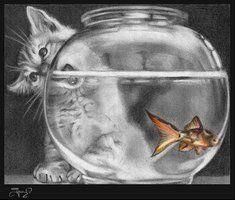 Temptation In The Fish Bowl By Simona Jankauskaite