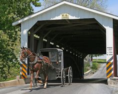 Covered bridge in Lancaster County, PA. Amish horse and buggy.