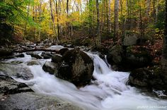 White Mountains National Park   New Hampshire, via Flickr