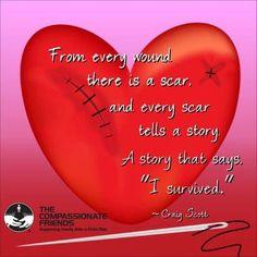 Scar's tell stories that words can't explain. CHD Awareness Week - For my son Lucas and all the other little heart warriors Chd Awareness, Awareness Ribbons, Atrial Septal Defect, Survivor Tattoo, Heart Valves, Heart Month, Open Heart Surgery, Congenital Heart Defect, Organ Donation