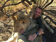 Kevin Richardson and his Lions