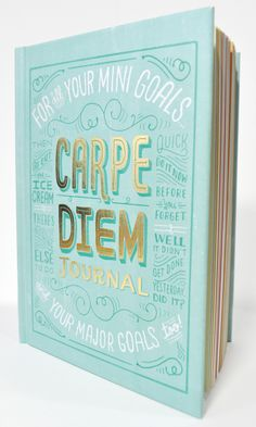 eek! so exciting. our carpe diem journal with the talented mary kate mcdevitt!
