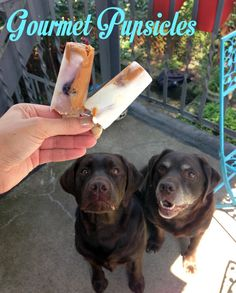 Gourmet Pupsicles.  Peanut Butter,  Plain Yogurt,  Frozen Blueberries,  Water. Medium Milk Bones