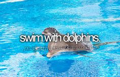 Omg, this is the 5th thing on my bucket list!