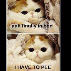 Hahaha every time!