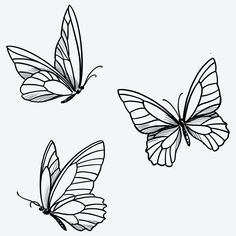 Simple Butterfly Tattoo, Butterfly Outline, Butterfly Tattoo Designs, Butterfly Shoulder Tattoo, Butterfly Line Drawing, Simple Line Tattoo, Butterfly Sketch, Line Work Tattoo, Inspiration Tattoos