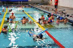Curso de verao de natación en el IDEA ~ Ags Sports