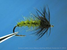 Green Caddis Larva Soft Hackle - Alpaca dubbing and Starling - by William Anderson - WilliamsFavorite.com - (trout flies nymph soft hackle spider)