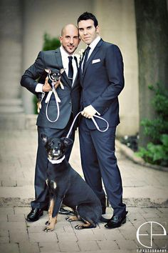 Dogs included at a gay wedding. :D
