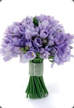 Periwinkle tulip bouquet - this bouquet is the only purple one I would want. Other than that its white!