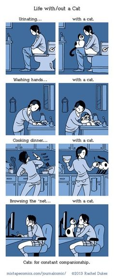 Life with/out a Cat...so true! :-)