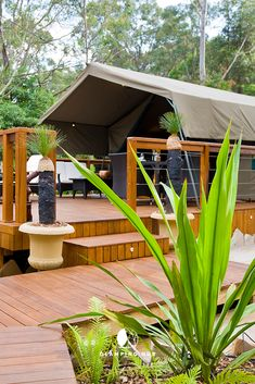 Fabulous Romantic Getaway in Sydney Ideal for Glamping, New South Wales Nature Photography Tips, Ocean Photography, Luxury Tents, Luxury Camping, Wales Holiday, His And Hers Sinks, Outdoor Seating, Outdoor Decor, Go Glamping