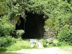 •Gomantong Cave, Sabah, Malaysia...this is where the swiftlet nests are collected, the main ingredient used in making birds' nest soup...