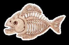Crazy Bonez Skeleton Fish Bones Halloween Prop Decoration Dead New for 2016