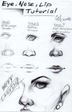 How To Draw Cute Button Noses In 5 Easy Steps Beginner Nose Drawing
