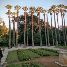 National gardens Greece, Sidewalk, Gardens, Life, Greece Country, Side Walkway, Outdoor Gardens, Walkway, Walkways