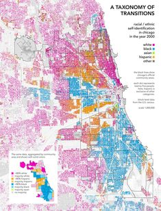 chicagodots_race_700.jpg (700×916)