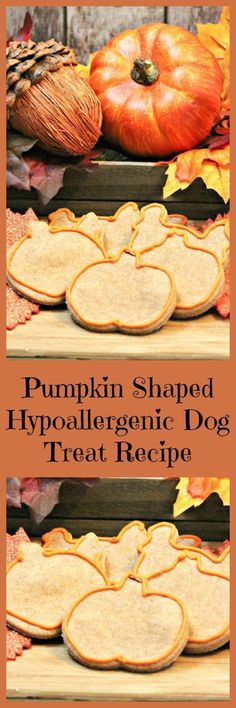 With all the fun fall holidays, I love making my dogs this fun pumpkin hypoallergenic dog treat recipe! Check out how to make this 4-ingredient treat!