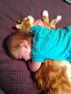 Kitty Hugs: Because sometimes we just need some snuggles  http://thewiseserpent.blogspot.com/2014/10/cat-thoughts-cat-pictures.html