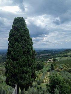 Tuscany (photo Jon Gasca)