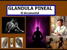 Glándula Pineal   El documental