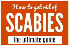 My guide on how to get rid of scabies is a thorough, tested treatment plan to cure a scabies infestation. And hopefully I can help. Cure Diabetes Naturally, Diabetes Treatment, How To Get Rid, Pest Control, Home Remedies, Natural Remedies, Rashes Remedies, Health Remedies, Health Tips