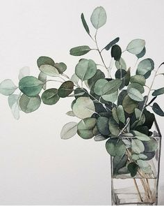 Time lapse video of me painting eucalyptus & leaves Watercolor Plants, Watercolor Leaves, Watercolor Artwork, Watercolor And Ink, Watercolor Artists, Watercolor Portraits, Watercolor Landscape, Plant Drawing, Painting & Drawing
