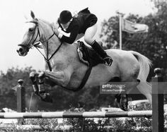 Show Jumping Horses, Still Image, Love, Jumper, Animals, Amor, Animales, Animaux, Jumpers