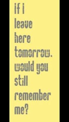 Lynyrd Skynyrd - Free Bird one of my fav. - Lynyrd Skynyrd – Free Bird one of my favorite lines! Great Song Lyrics, Music Lyrics, Music Songs, Lyric Art, I Love Music, Music Is Life, My Music, Papa Roach, Breaking Benjamin