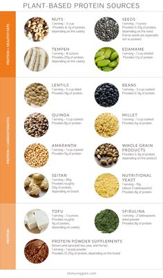 Plant-Based Protein Sources by ohomyveggies #Infographic #Protein #Plants