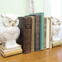 Keep your reading material in line with two winged guardian bookends.