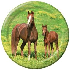 Wild Horses 9in Round Plates >>> Want to know more, click on the image. (This is an affiliate link and I receive a commission for the sales) #PartySupplies