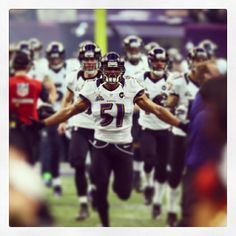 Baltimore Ravens SuperBowl AFC CHAMPS