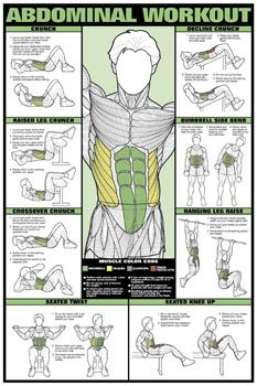Fitness (Men's) Professional Wall Chart Poster - Abs Stomach Exercises