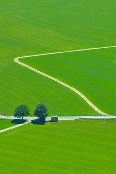 Green Landscape, Tyrol, Austria by Ionut Iordache