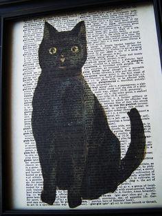 'The Black Cat.'