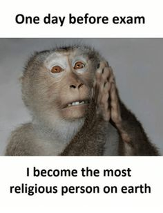 Me after exam results – Check out these funny exam memes