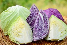 Start Drinking Cabbage Juice Now & This Is Why , We are sometimes informed that the herbivorous clan amongst us is comparatively disadvantaged of important vitamins. However, guess what, expensive vegetaria , Types Of Cabbage, Raw Cabbage, Cabbage Head, Cabbage Juice For Ulcers, Cabbage Juice Benefits, Fermented Cabbage, Skin Nutrition, La Constipation, Stomach Ulcers