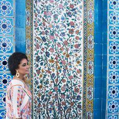 Elizabeth Taylor in Shiraz, Iran.