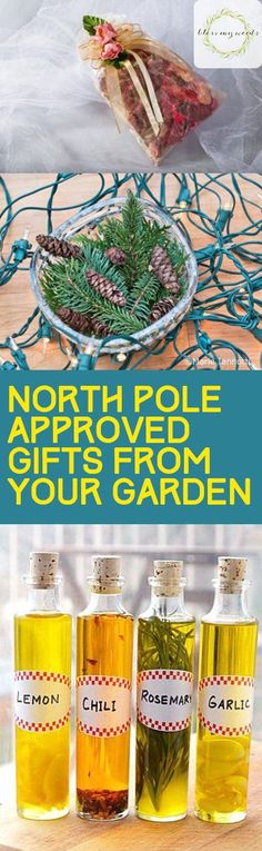 North Pole Approved Gifts From Your Garden - Bless My Weeds Handmade Christmas Crafts, Christmas Gifts, Christmas Garden, Christmas Ideas, Gardening For Beginners, Gardening Tips, Sustainable Gardening, Urban Gardening, Diy Backyard Fence