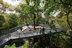 Morris Arboretum, Out on a Limb | Metcalfe Architecture & Design; Photo: Paul Warchol | Archinect