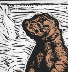 Prairie Dog Print. $20.00, via Etsy.