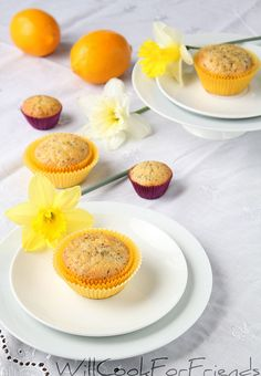 Meyer Lemon Chia Seed Muffins from Will Cook for Friends