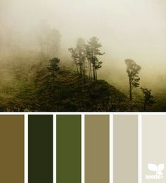 Misty wood tones