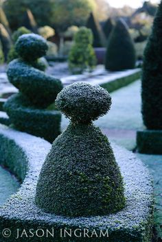 Box topiary Photo by Jason Ingram Beautiful Landscapes, Beautiful Gardens, Winter's Tale, Garden Theme, Autumn Garden, Garden Sculpture, Garden Design, Modern Design, Home And Garden