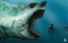 Fake but Megalodon is lyfe Shark Pictures, Shark Photos, Mystical Creatures Drawings, Dragons, Species Of Sharks, Shark Bait, Megalodon Shark, Dark Artwork, Underwater Creatures