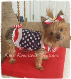 july 4th dog clothes