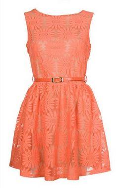 A nice coral-orange dress Orange Cocktail Dresses, Red Lace Cocktail Dress, Red Floral Dress, Coral Dress, Daisy Dress, Orange Dress, Floral Dresses, Short Lace Dress, Short Dresses