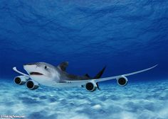 The totally awesome Shark Jet.